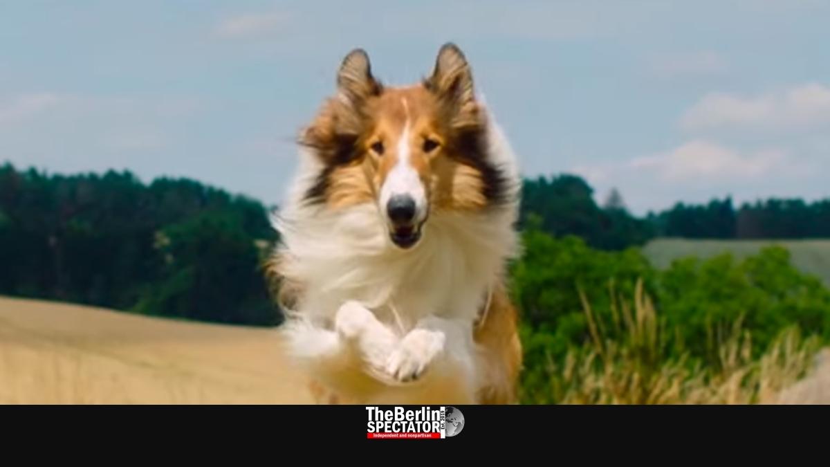 lassie by warner bros 002.'